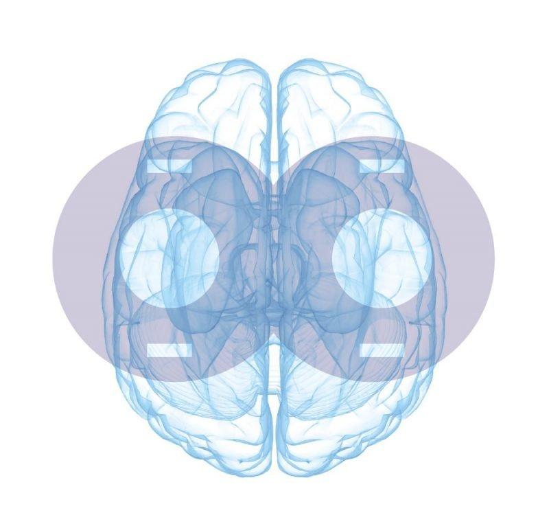 Magstim TMS Coil brain scan